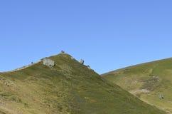 山在阿尔卑斯 免版税库存照片