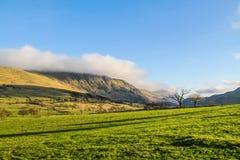 山在Ambelside Cumbria 库存照片