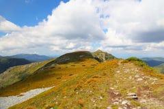山在Calimani山的土坎足迹,罗马尼亚 免版税库存图片