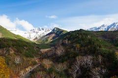 山在Daisetsuzan公园 库存图片