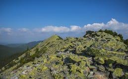 山在Gorgany 库存照片