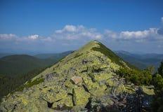 山在Gorgany 免版税图库摄影