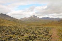 山在Kazahstan 免版税库存照片