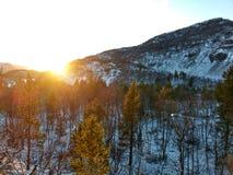 山在Kvenvik挪威 图库摄影