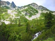 山在Retezat国家公园 库存图片