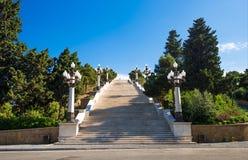 山地公园,上升高梯子  免版税库存照片