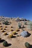 山坡在沙漠 免版税库存图片