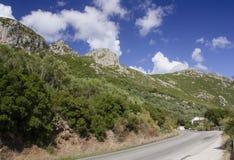 山坡在科孚岛 库存图片