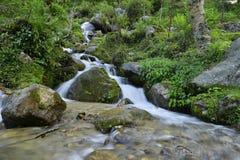 山坡瀑布在森林里 库存图片