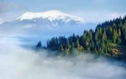 山坡的秋天森林 免版税图库摄影