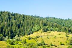 山坡的被操刀的草甸 免版税库存图片