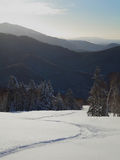 山坡风景看法与snowboardi tracce的 免版税库存照片