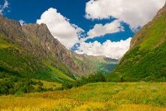山夏天 晴朗的日 绿色森林和草甸 库存照片