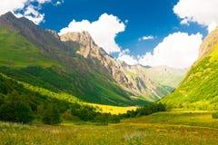 山夏天 晴朗的日 绿色森林和草甸 免版税库存照片