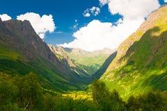 山夏天 晴朗的日 绿色森林和草甸 库存图片
