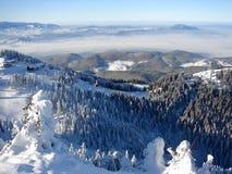山多雪的顶层 免版税库存图片