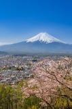 山富士在春天 库存照片