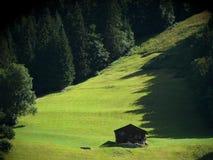 山小屋在绿色草甸 免版税库存照片
