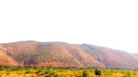 山小山风景绿叶 免版税库存照片