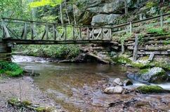 山小河和足迹桥梁。 库存图片