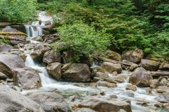 山小河在一个夏日在少许森林里 库存图片