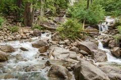 山小河在一个夏日在少许森林里 库存照片