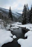 山小河在冬天 库存图片