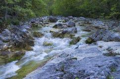 山小河在夏天 免版税库存图片