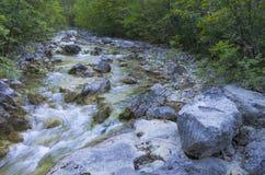 山小河在夏天 免版税图库摄影