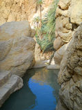 山小河在峡谷。 库存照片