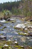 山小河在春天雪 Arshan手段 库存照片