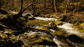山小河在春天 免版税库存照片