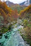 山小河在秋天,朱利安阿尔卑斯山,意大利 免版税库存照片