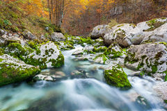 山小河在秋天,朱利安阿尔卑斯山,意大利 免版税库存图片