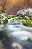 山小河在秋天,朱利安阿尔卑斯山,意大利 库存图片