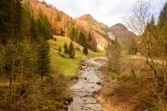 山小河在秋天 库存照片