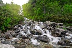 山小河小瀑布在Tatra国家公园 免版税图库摄影