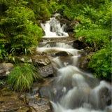 山小河河 库存图片