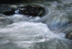 山小河的被弄脏的细节 库存图片