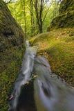 山小河的水小瀑布的风景 河流经一个美丽的森林围拢的生苔岩石 图库摄影