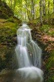 山小河的水小瀑布的风景 河流经一个美丽的森林围拢的生苔岩石 库存照片