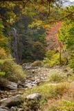 山小河看法与秋天颜色的 免版税库存图片