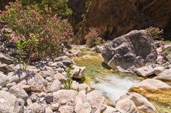 山小河通过Samaria峡谷,克利特海岛  库存图片
