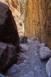 山小河通过Samaria峡谷,克利特海岛  库存照片