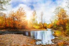 山小河,森林在日落的秋天风景 免版税库存照片