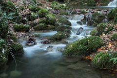 山小河,秋天 图库摄影