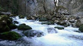 山小河 水波纹 水面 影视素材