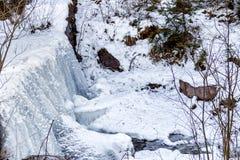 山小河冻瀑布在雪和ro中间的 库存图片
