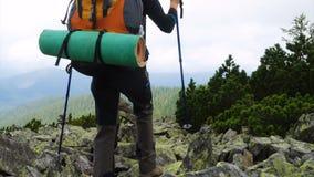 山山顶的微笑的女孩远足者 股票录像