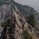 山岩石和有些树 免版税库存照片